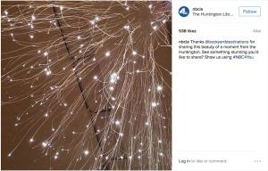 nbcla-instagram2